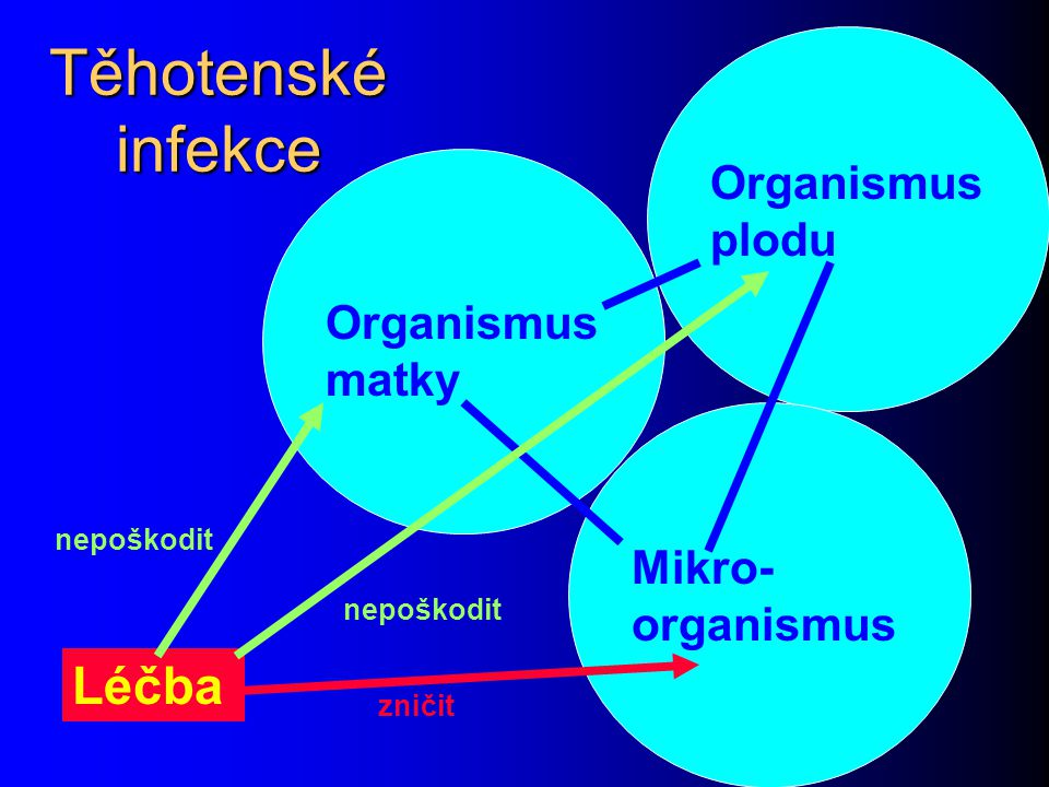 Těhotenské infekce Organismus matky Organismus plodu Mikro- organismus Léčba nepoškodit zničit