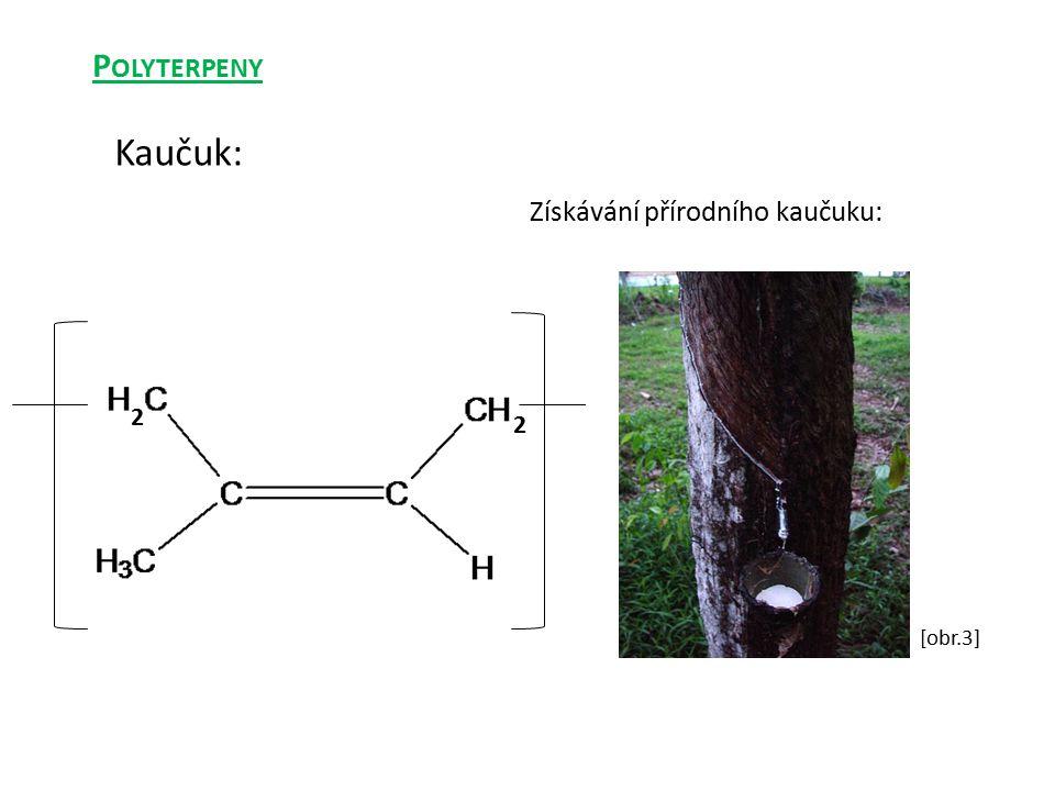 Získávání přírodního kaučuku: Kaučuk: 2 2 P OLYTERPENY [obr.3]