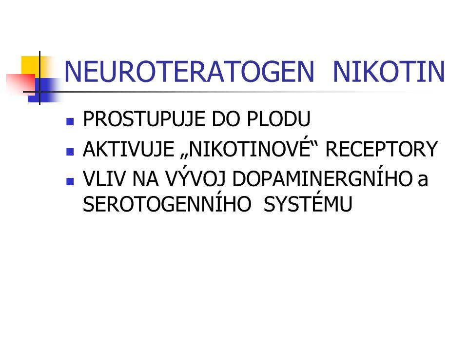 """NEUROTERATOGEN NIKOTIN PROSTUPUJE DO PLODU AKTIVUJE """"NIKOTINOVÉ RECEPTORY VLIV NA VÝVOJ DOPAMINERGNÍHO a SEROTOGENNÍHO SYSTÉMU"""