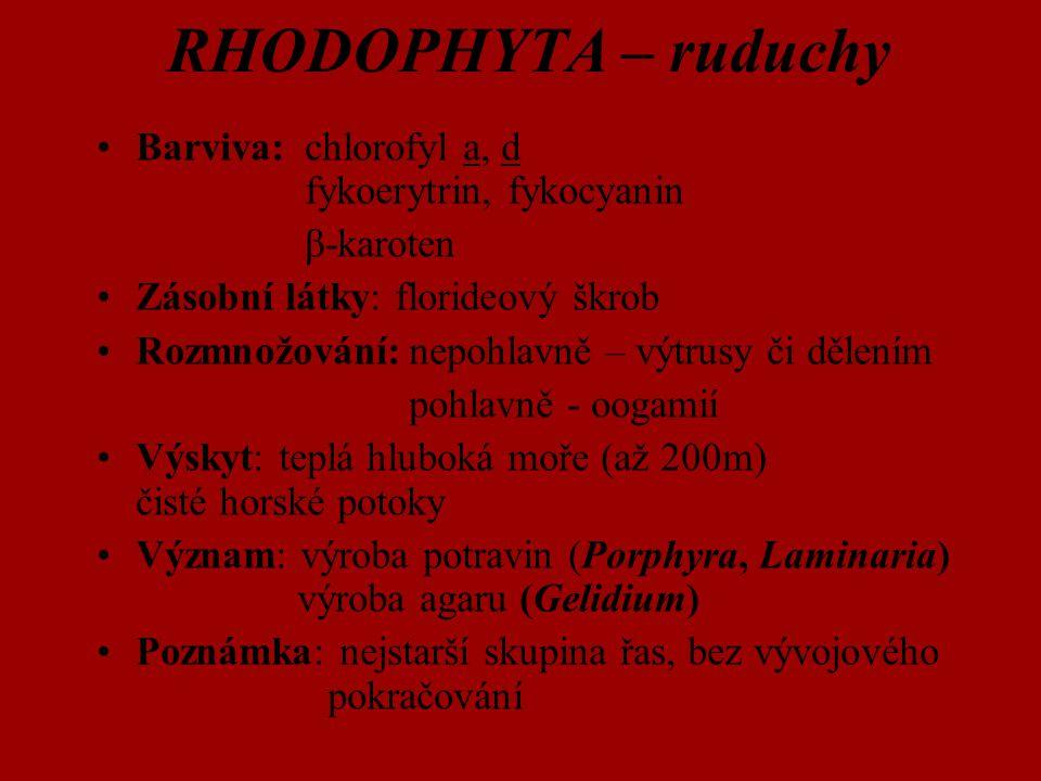 Barviva:chlorofyl a, d fykoerytrin, fykocyanin β-karoten Zásobní látky: florideový škrob Rozmnožování:nepohlavně – výtrusy či dělením pohlavně - oogam