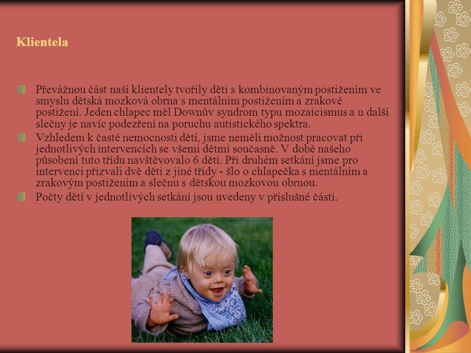 Klientela Převážnou část naší klientely tvořily děti s kombinovaným postižením ve smyslu dětská mozková obrna s mentálním postižením a zrakové postižení.