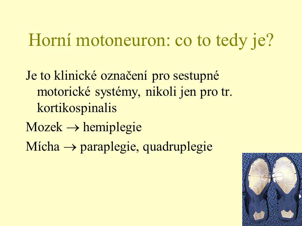 Horní motoneuron: co to tedy je? Je to klinické označení pro sestupné motorické systémy, nikoli jen pro tr. kortikospinalis Mozek  hemiplegie Mícha 