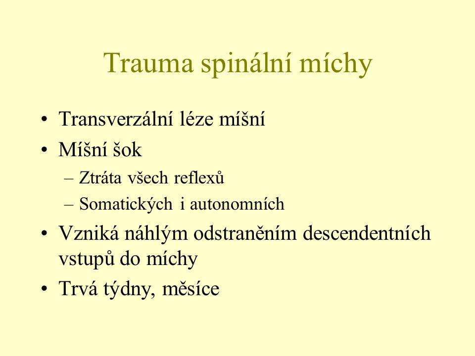 Trauma spinální míchy Transverzální léze míšní Míšní šok –Ztráta všech reflexů –Somatických i autonomních Vzniká náhlým odstraněním descendentních vst