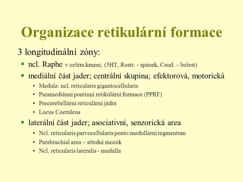 Organizace retikulární formace 3 longitudinální zóny:  ncl. Raphe v celém kmeni, (5HT, Rostr. - spánek, Caud. – bolest)  mediální část jader; centrá