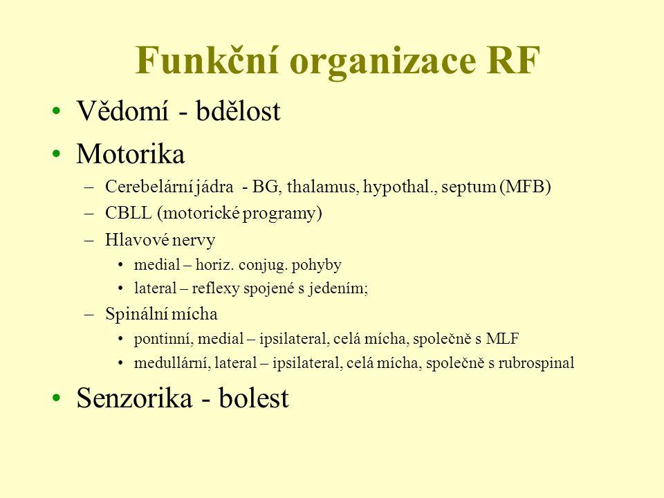 Funkční organizace RF Vědomí - bdělost Motorika –Cerebelární jádra - BG, thalamus, hypothal., septum (MFB) –CBLL (motorické programy) –Hlavové nervy m