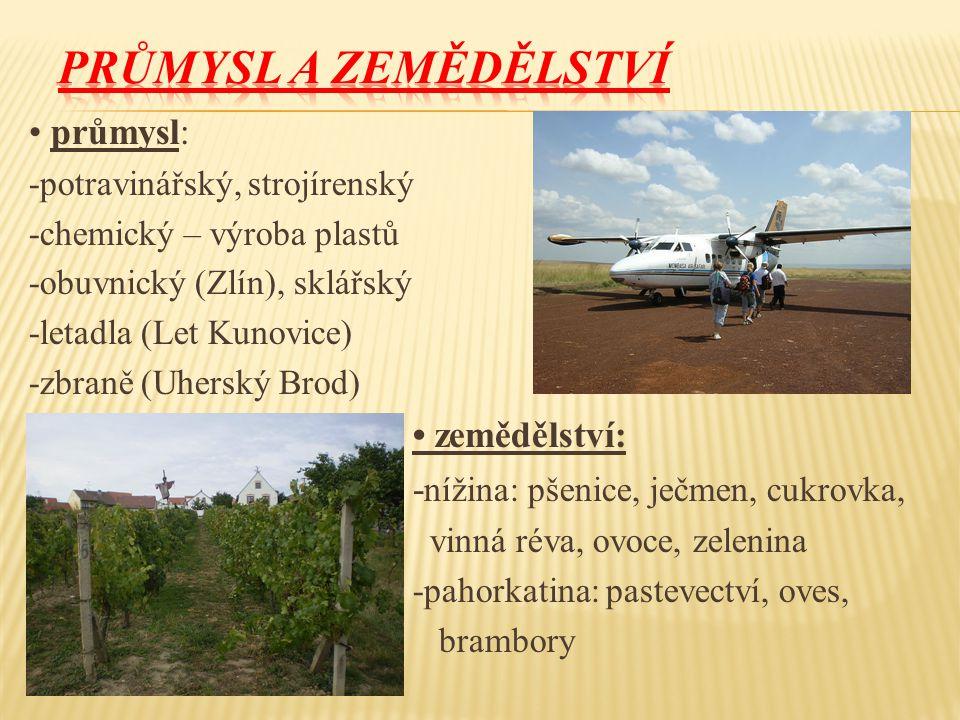 průmysl: -potravinářský, strojírenský -chemický – výroba plastů -obuvnický (Zlín), sklářský -letadla (Let Kunovice) -zbraně (Uherský Brod) zemědělství