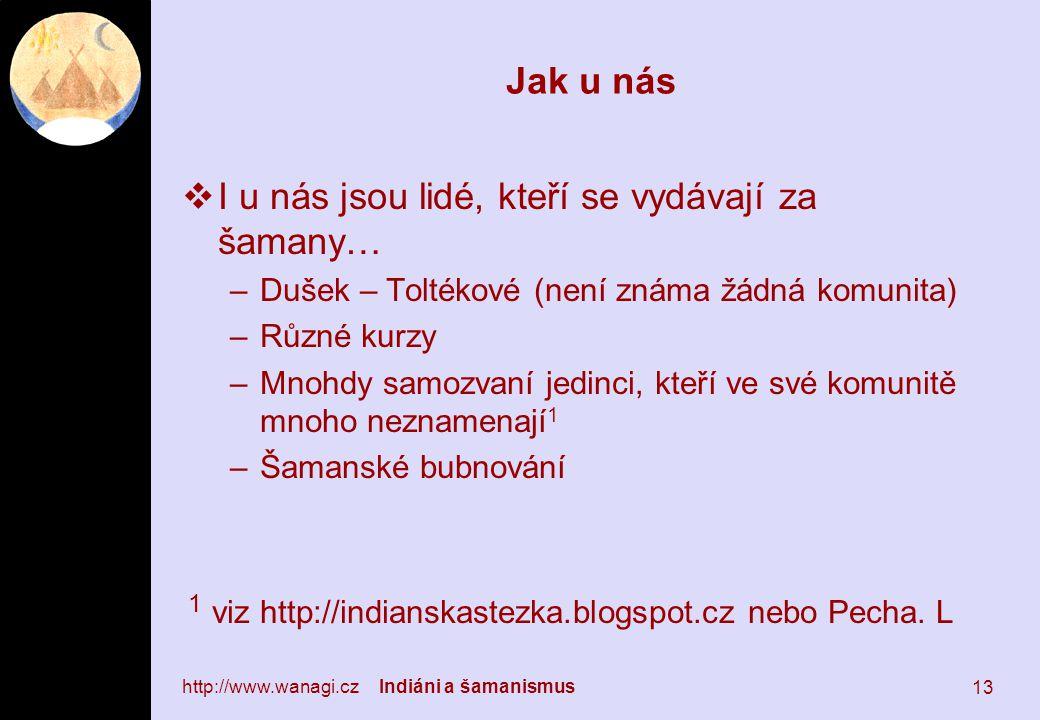 Jak u nás  I u nás jsou lidé, kteří se vydávají za šamany… –Dušek – Toltékové (není známa žádná komunita) –Různé kurzy –Mnohdy samozvaní jedinci, kteří ve své komunitě mnoho neznamenají 1 –Šamanské bubnování 1 viz http://indianskastezka.blogspot.cz nebo Pecha.