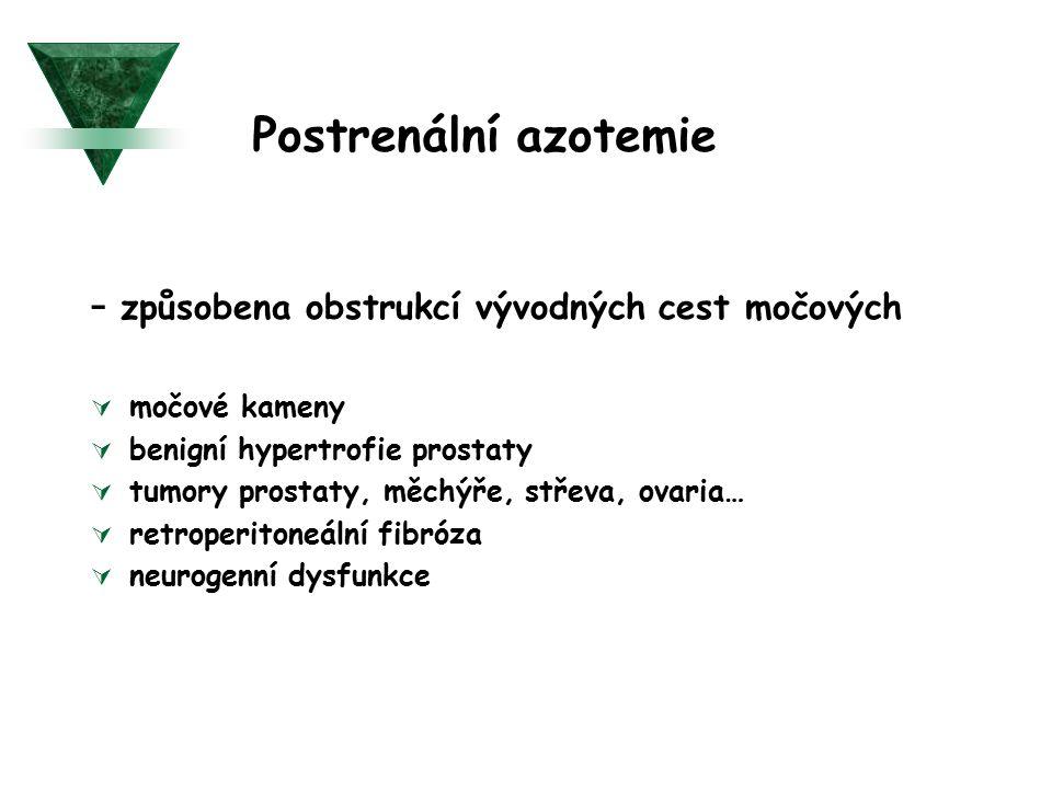 Postrenální azotemie - způsobena obstrukcí vývodných cest močových  močové kameny  benigní hypertrofie prostaty  tumory prostaty, měchýře, střeva,