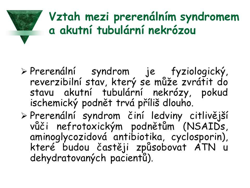Vztah mezi prerenálním syndromem a akutní tubulární nekrózou  Prerenální syndrom je fyziologický, reverzibilní stav, který se může zvrátit do stavu a