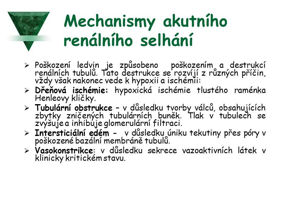 Mechanismy akutního renálního selhání  Poškození ledvin je způsobeno poškozením a destrukcí renálních tubulů. Tato destrukce se rozvíjí z různých pří