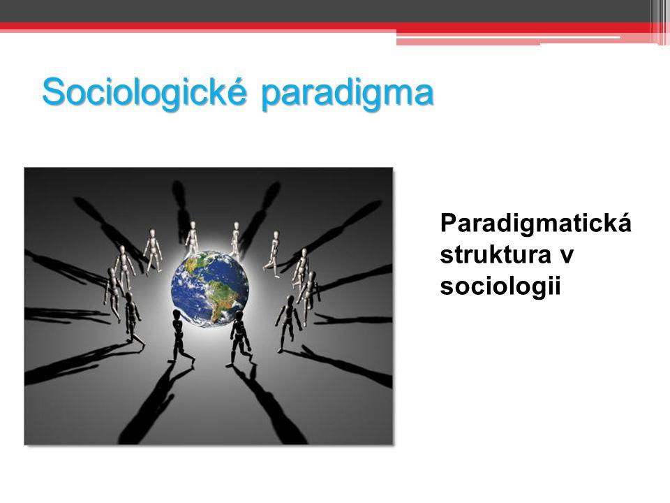 Sociologické paradigma Paradigmatická struktura v sociologii