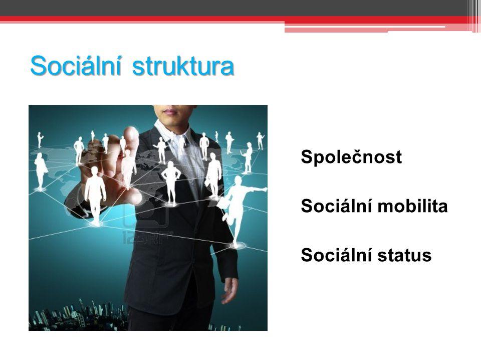 Sociální struktura Společnost Sociální mobilita Sociální status