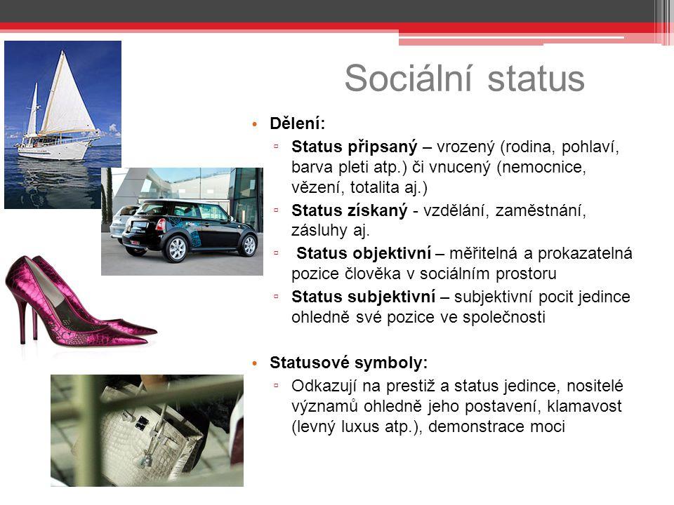 Sociální status Dělení: ▫ Status připsaný – vrozený (rodina, pohlaví, barva pleti atp.) či vnucený (nemocnice, vězení, totalita aj.) ▫ Status získaný - vzdělání, zaměstnání, zásluhy aj.