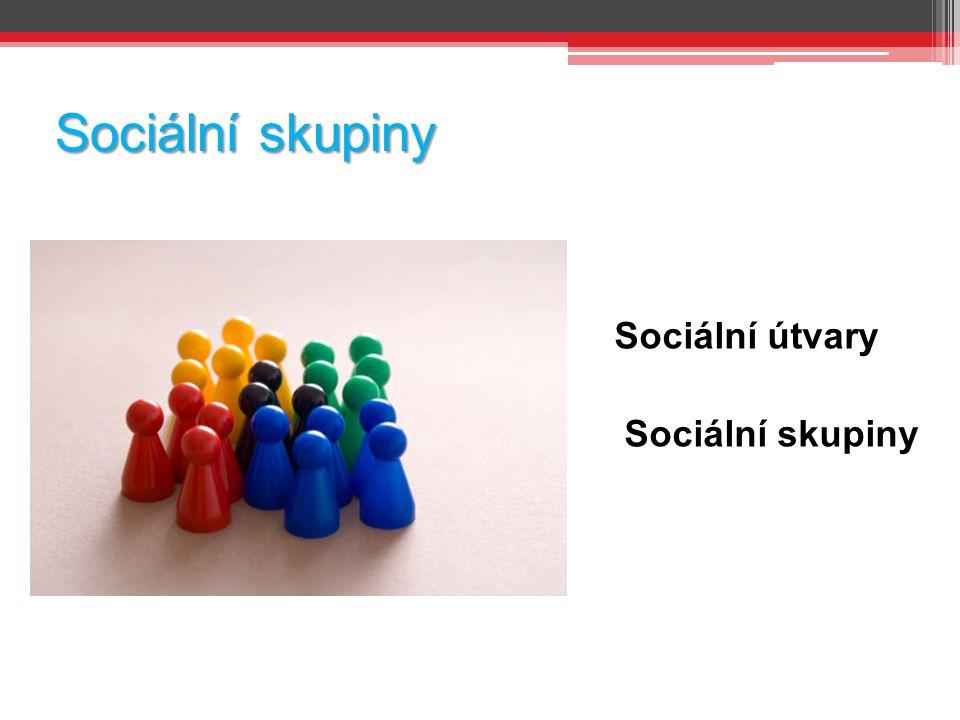 Sociální skupiny Sociální útvary Sociální skupiny