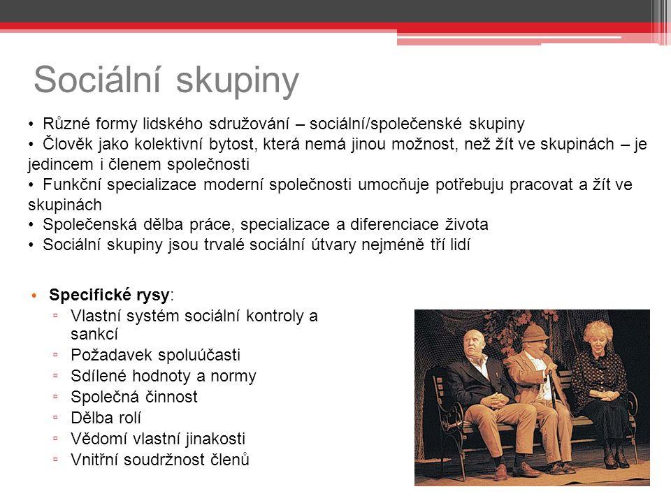 Sociální skupiny Specifické rysy: ▫ Vlastní systém sociální kontroly a sankcí ▫ Požadavek spoluúčasti ▫ Sdílené hodnoty a normy ▫ Společná činnost ▫ D