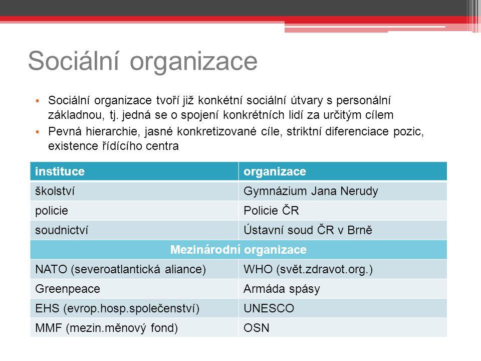 Sociální organizace Sociální organizace tvoří již konkétní sociální útvary s personální základnou, tj.