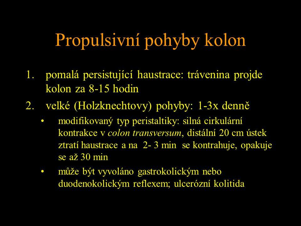 Propulsivní pohyby kolon 1.pomalá persistující haustrace: trávenina projde kolon za 8-15 hodin 2.velké (Holzknechtovy) pohyby: 1-3x denně modifikovaný typ peristaltiky: silná cirkulární kontrakce v colon transversum, distální 20 cm ústek ztratí haustrace a na 2- 3 min se kontrahuje, opakuje se až 30 min může být vyvoláno gastrokolickým nebo duodenokolickým reflexem; ulcerózní kolitida