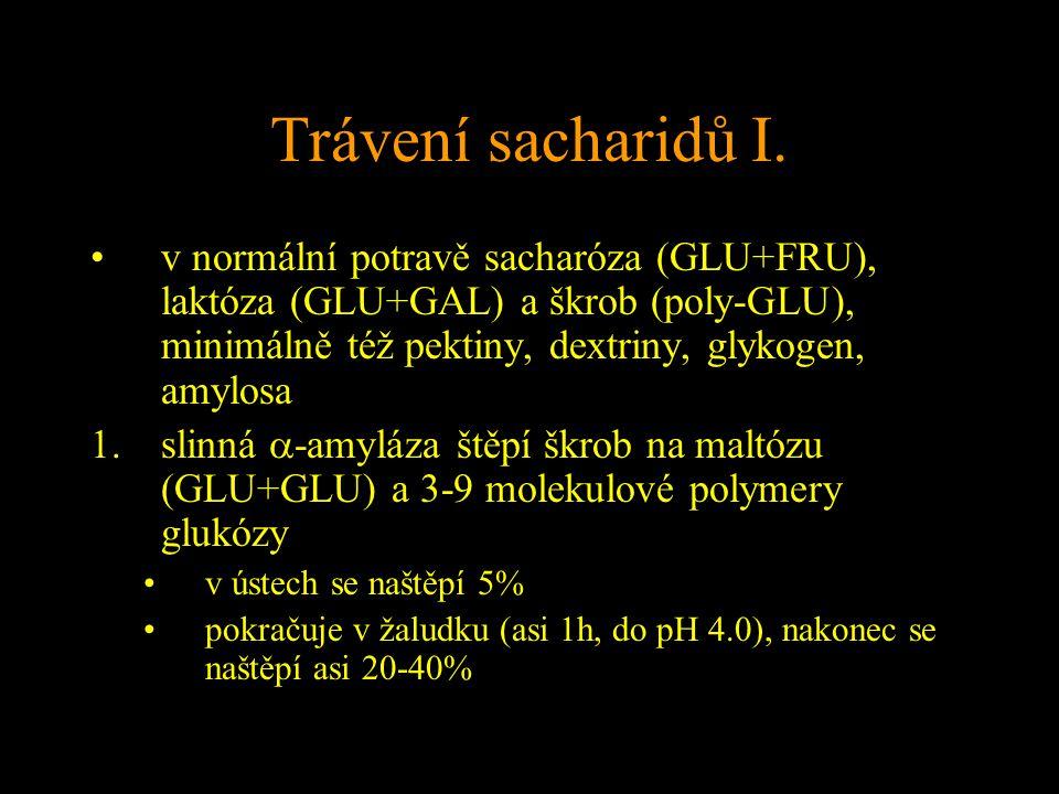 Trávení sacharidů I. v normální potravě sacharóza (GLU+FRU), laktóza (GLU+GAL) a škrob (poly-GLU), minimálně též pektiny, dextriny, glykogen, amylosa