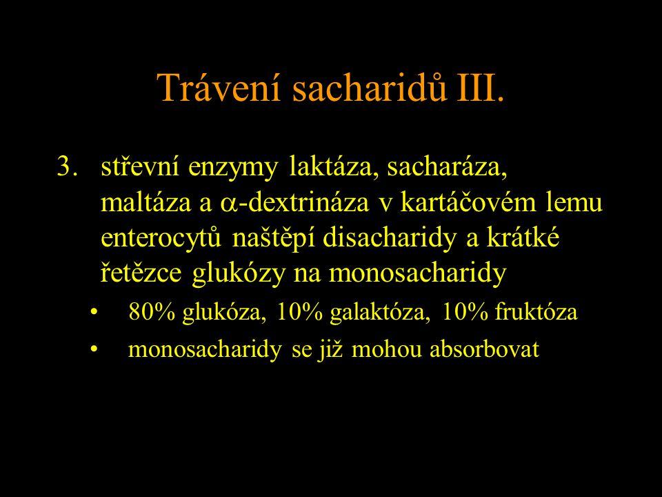 Trávení sacharidů III.