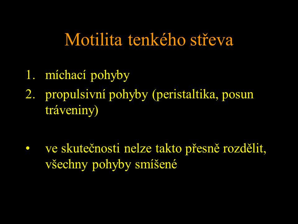 Motilita tenkého střeva 1.míchací pohyby 2.propulsivní pohyby (peristaltika, posun tráveniny) ve skutečnosti nelze takto přesně rozdělit, všechny pohyby smíšené