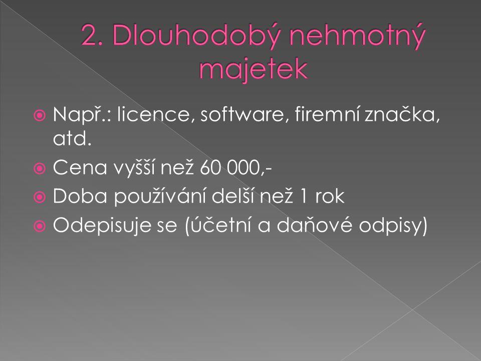  Např.: licence, software, firemní značka, atd.