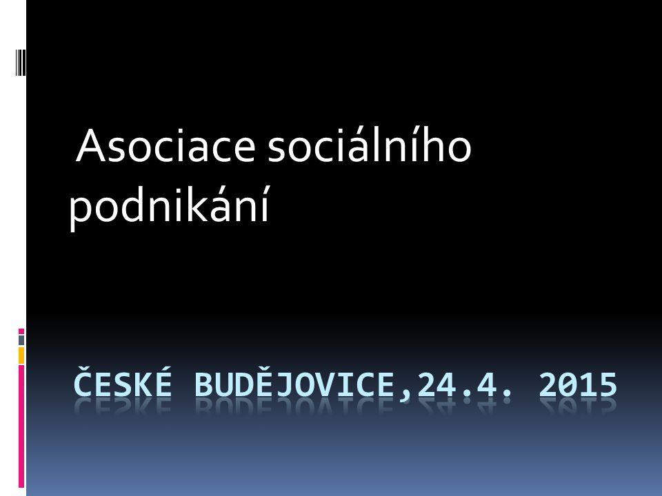 Asociace sociálního podnikání