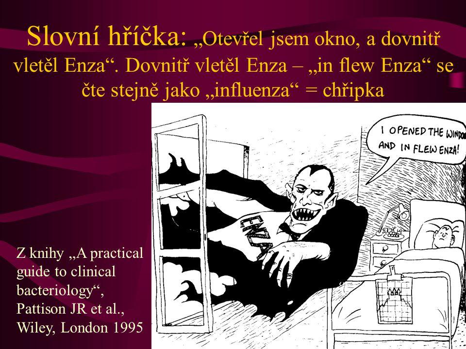 """Slovní hříčka: """"Otevřel jsem okno, a dovnitř vletěl Enza"""". Dovnitř vletěl Enza – """"in flew Enza"""" se čte stejně jako """"influenza"""" = chřipka Z knihy """"A pr"""
