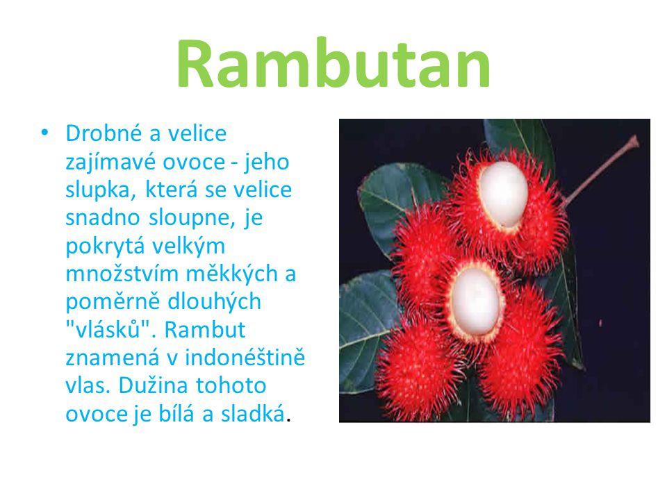 Rambutan Drobné a velice zajímavé ovoce - jeho slupka, která se velice snadno sloupne, je pokrytá velkým množstvím měkkých a poměrně dlouhých vlásků .