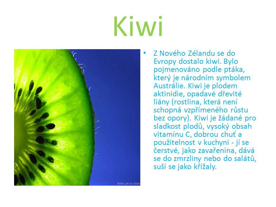 Kiwi Z Nového Zélandu se do Evropy dostalo kiwi.