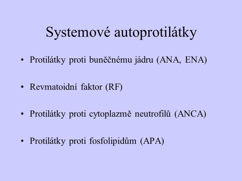 Systemové autoprotilátky Protilátky proti buněčnému jádru (ANA, ENA) Revmatoidní faktor (RF) Protilátky proti cytoplazmě neutrofilů (ANCA) Protilátky