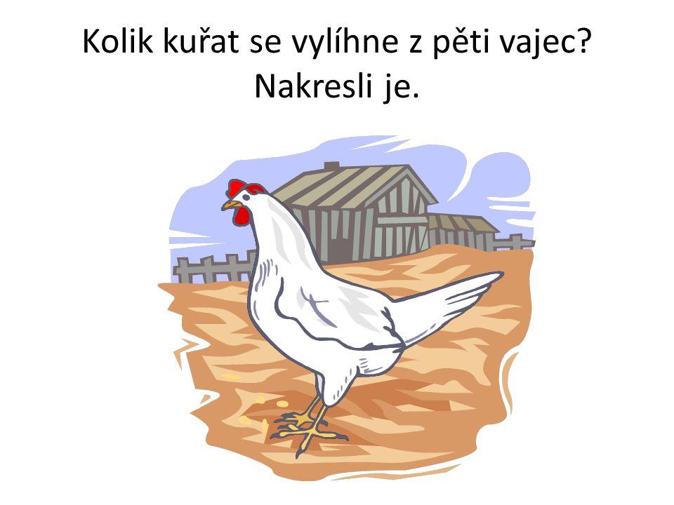 Kolik kuřat se vylíhne z pěti vajec? Nakresli je.