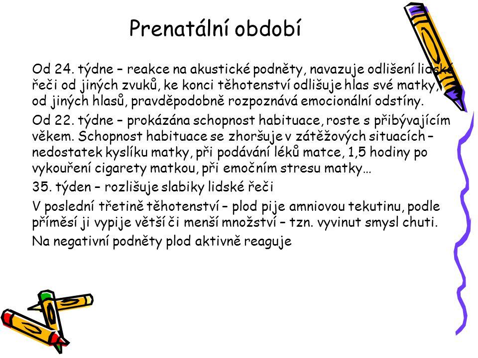 Prenatální období Od 24.