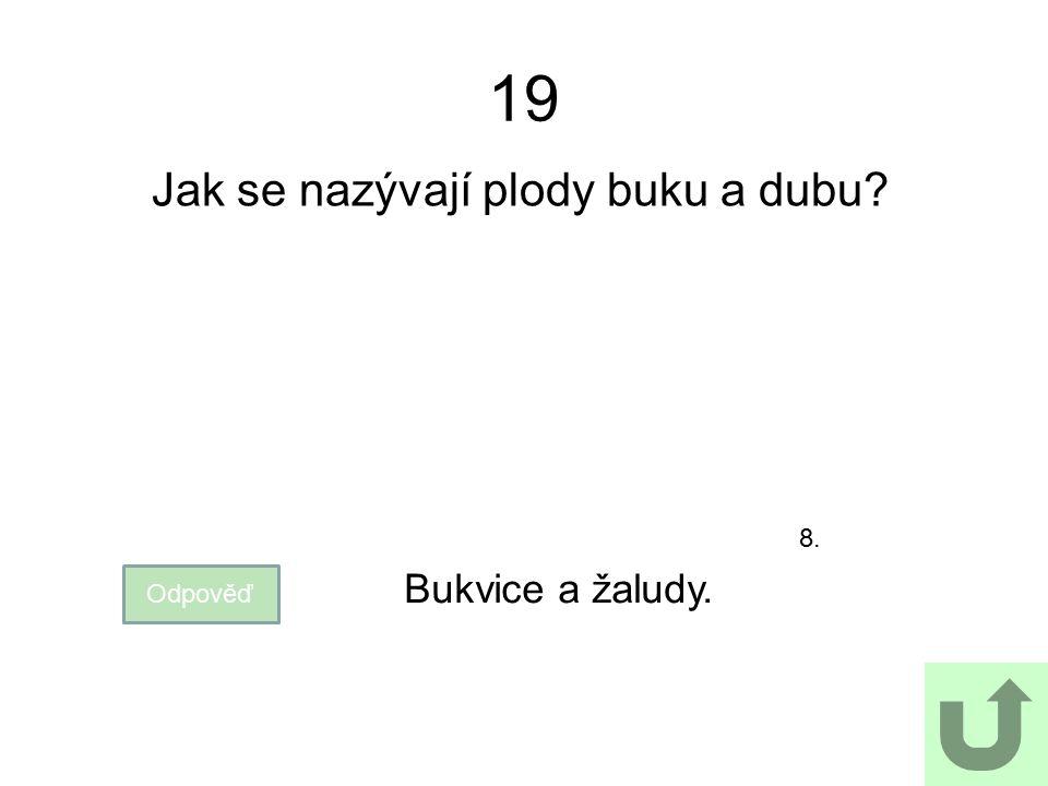 19 Jak se nazývají plody buku a dubu? Odpověď Bukvice a žaludy. 8.