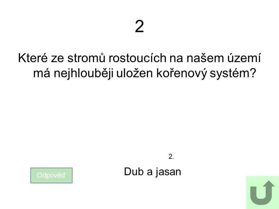 2 Které ze stromů rostoucích na našem území má nejhlouběji uložen kořenový systém? Odpověď Dub a jasan 2.