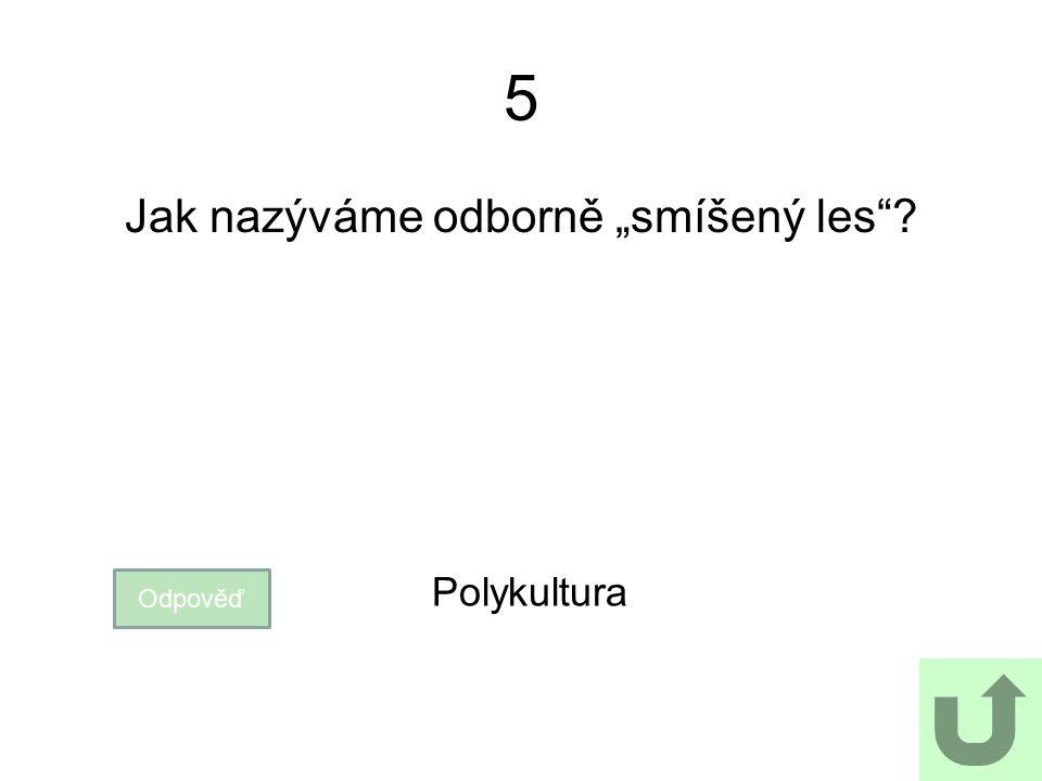 """5 Jak nazýváme odborně """"smíšený les""""? Odpověď Polykultura"""