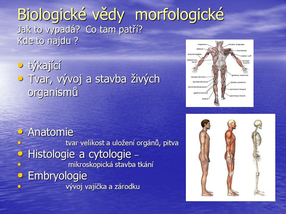 Biologické vědy morfologické Jak to vypadá? Co tam patří? Kde to najdu ? týkající týkající Tvar, vývoj a stavba živých Tvar, vývoj a stavba živých org