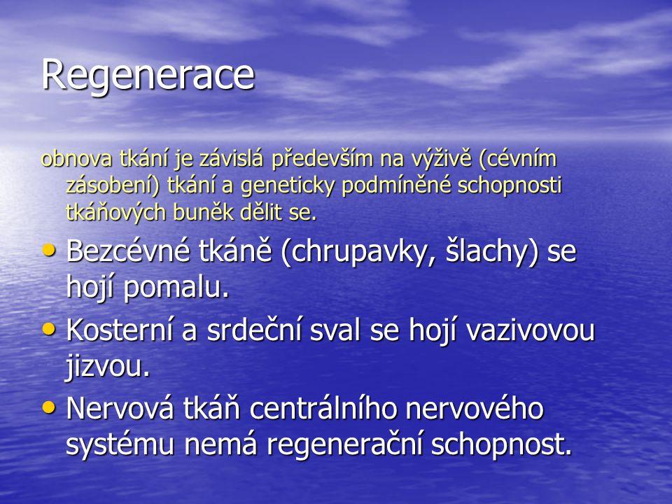 Regenerace obnova tkání je závislá především na výživě (cévním zásobení) tkání a geneticky podmíněné schopnosti tkáňových buněk dělit se. Bezcévné tká