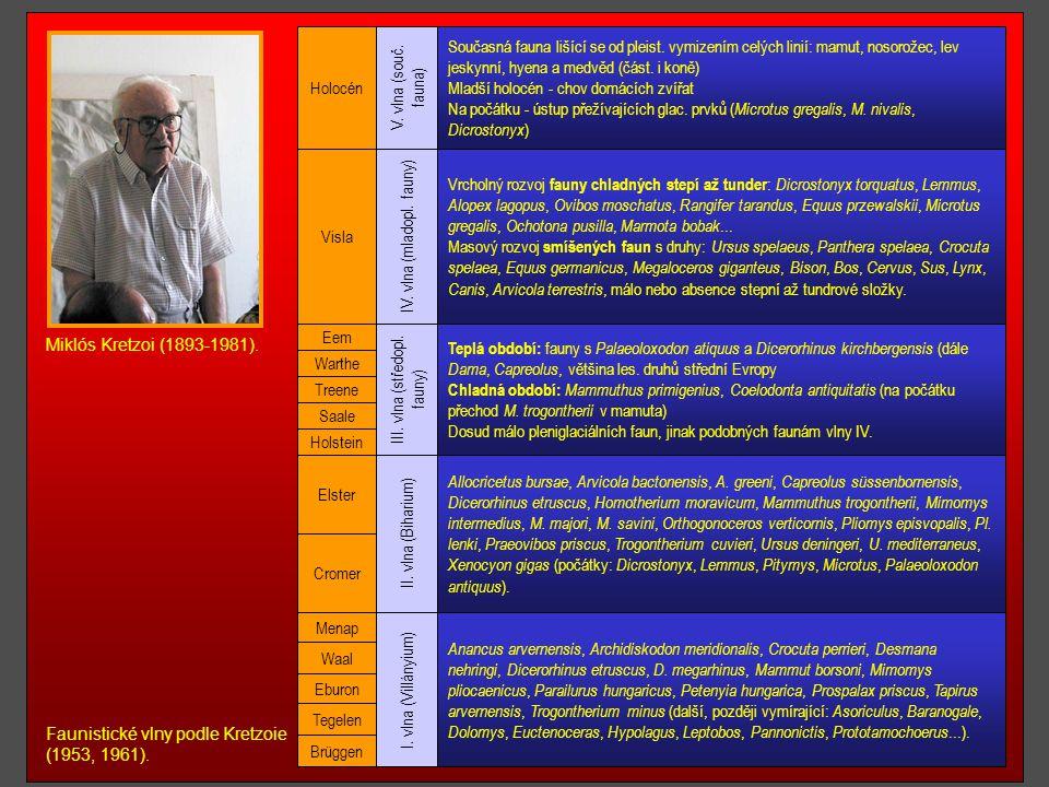 1963 - D. B. Ericson - stanovaní hranice na základě planktonních dírkovců 1961 - M. Kretzoi - základní členění na faunistické vlny 1968 - Mezinárodní