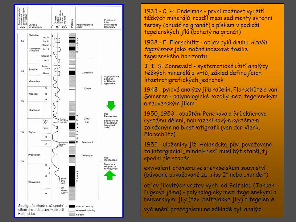 A. Schreuderová - potvrzení předcromerského stáří tegelenských jílů na základě savcí mikrofauny Teschova studia kvartérních měkkýšů - první korelace s
