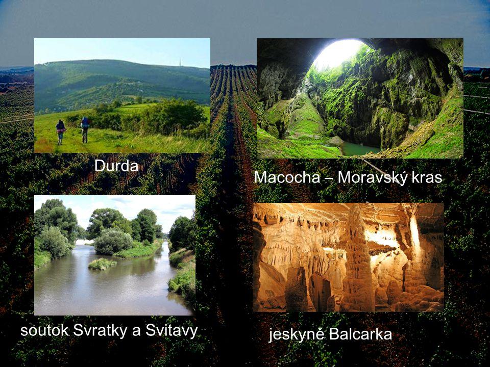 Osídlení Počet okresů: 7 (Blansko, Brno-město, Brno-venkov, Břeclav, Hodonín, Vyškov, Znojmo) Počet obcí: 673 (48 měst) Brno má 400 059 obyvatel Hodonín- (radnice) Brno