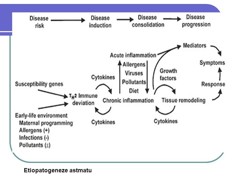 Etiopatogeneze astmatu