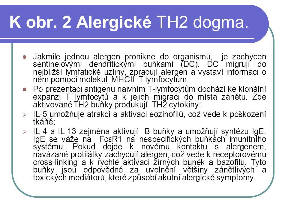K obr.2 Alergické TH2 dogma.