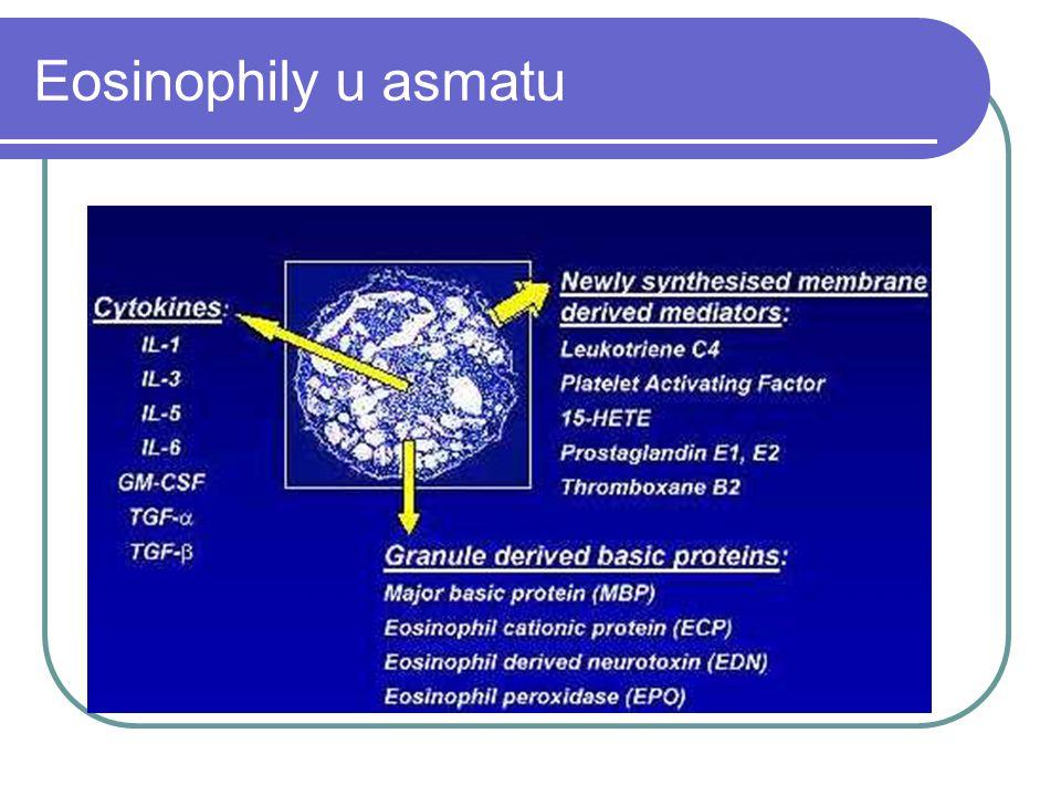 Eosinophily u asmatu