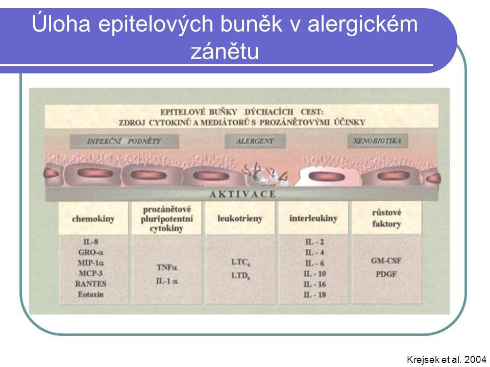 Úloha epitelových buněk v alergickém zánětu Krejsek et al. 2004