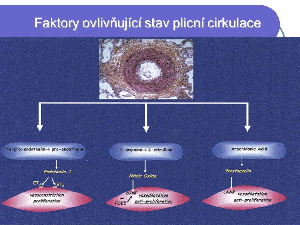 Faktory ovlivňující stav plicní cirkulace