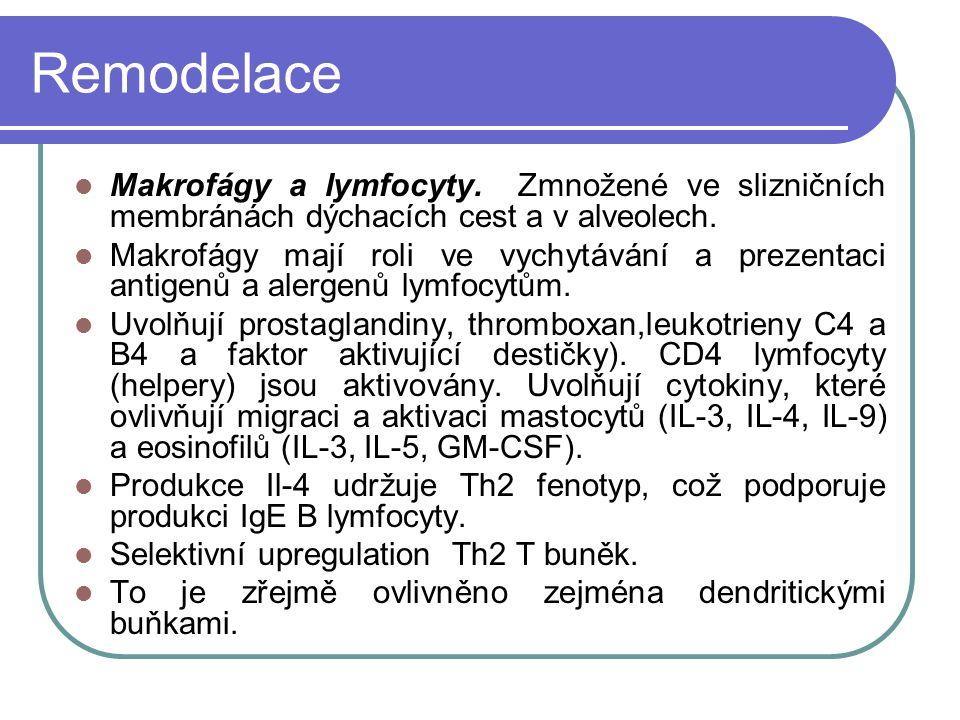 Remodelace Makrofágy a lymfocyty.Zmnožené ve slizničních membránách dýchacích cest a v alveolech.