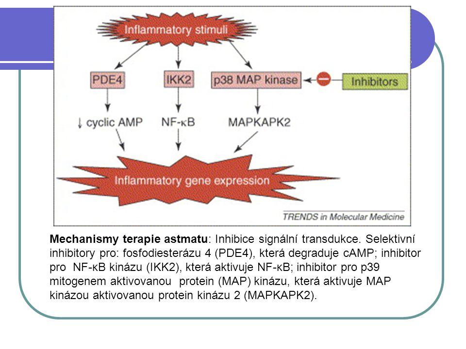 Mechanismy terapie astmatu: Inhibice signální transdukce.