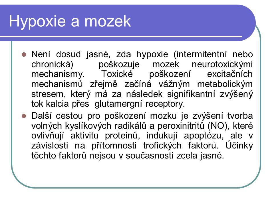 Hypoxie a mozek Není dosud jasné, zda hypoxie (intermitentní nebo chronická) poškozuje mozek neurotoxickými mechanismy.