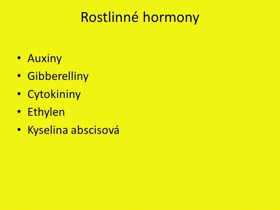 Rostlinné hormony Auxiny Gibberelliny Cytokininy Ethylen Kyselina abscisová