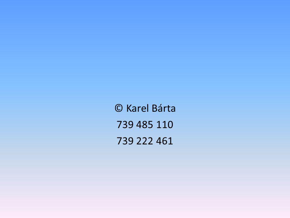 © Karel Bárta 739 485 110 739 222 461